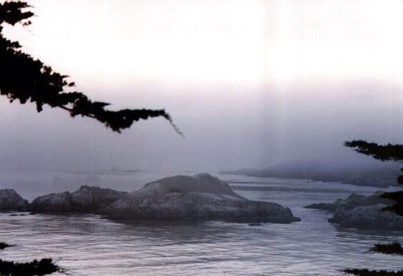 [Fog, Rocks, and Sea off SR1]