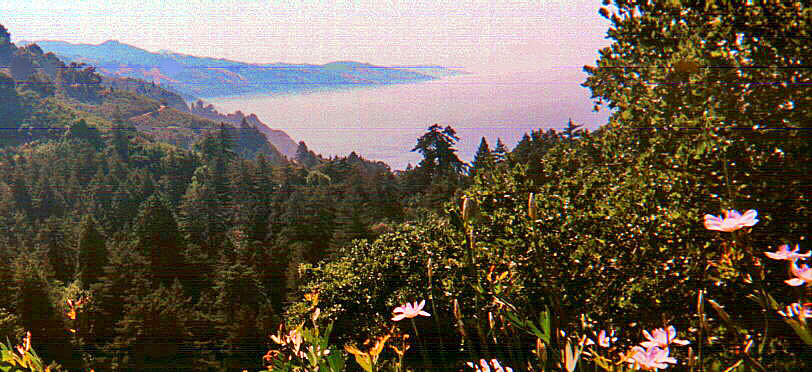 [View from Nepenthe, Big Sur]