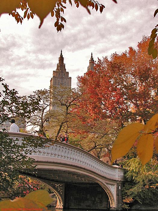 [Bow Bridge in Autumn]