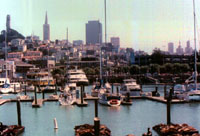 [View from Pier 39]