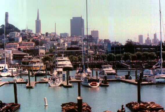 [San Francisco Bay, Pier 39]
