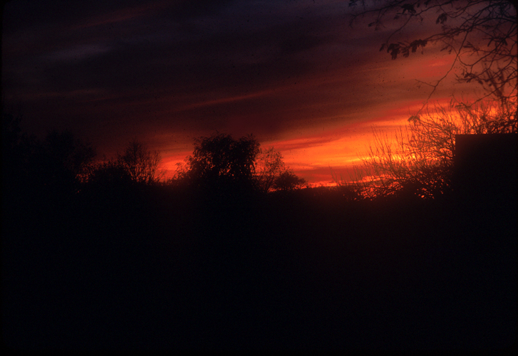[Adelphi Sunset - Kodachrome, 1989]