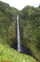 [Akaka Falls, B.I.]