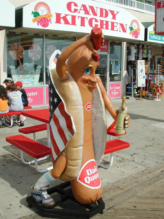 [Hot Dog]