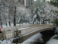 [Bow Bridge Xmas 2002]