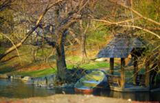 [Central Park Boat]
