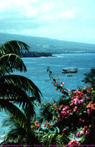 [Kamehameha's View]