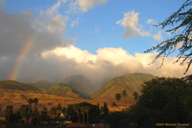 [Maui Rainbow]