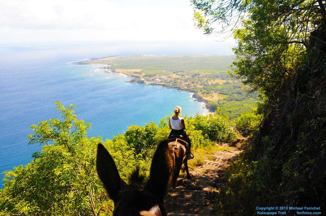 [Kalaupapa Trail by mule]