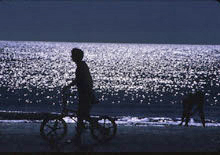 [Bicycle Silhouette]