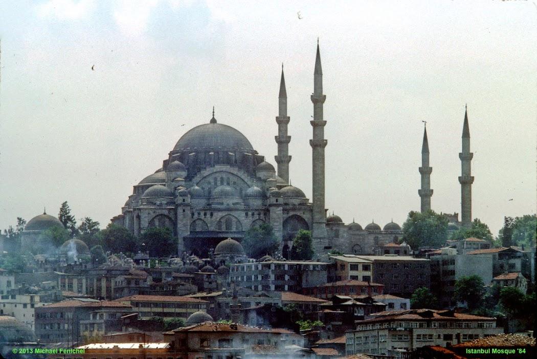 [ Süleymaniye Mosque - Istanbul ]